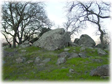 Boulders and oaks on Eagle Ridge hillsides
